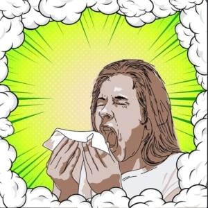 Dyson Luftreiniger Test - Alergiker